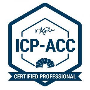 ICP-ACC - 新加坡数学补习老师